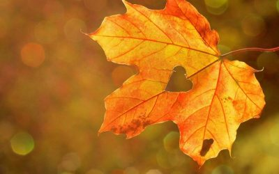 Když podzim maluje